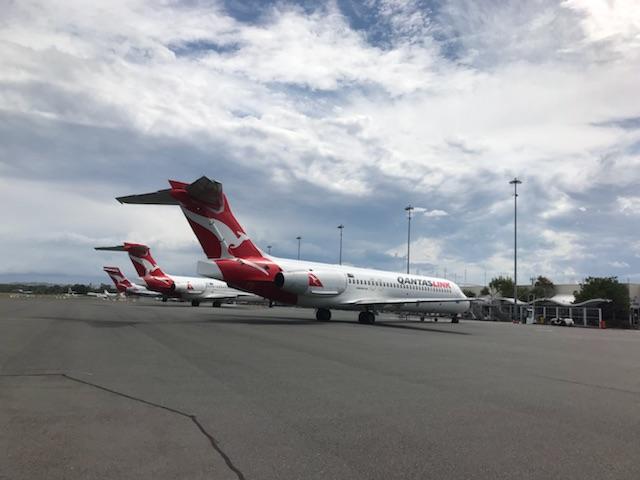 Flying Kangaroo hops to Sunshine Coast
